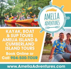 Amelia Adventures