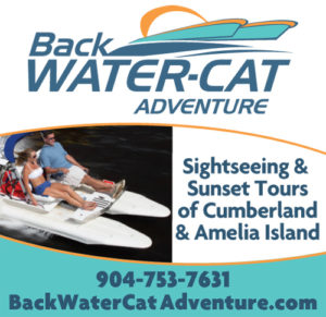 Backwater-Cat Adventure