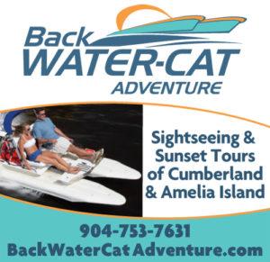 Backwater-Cat Adventure